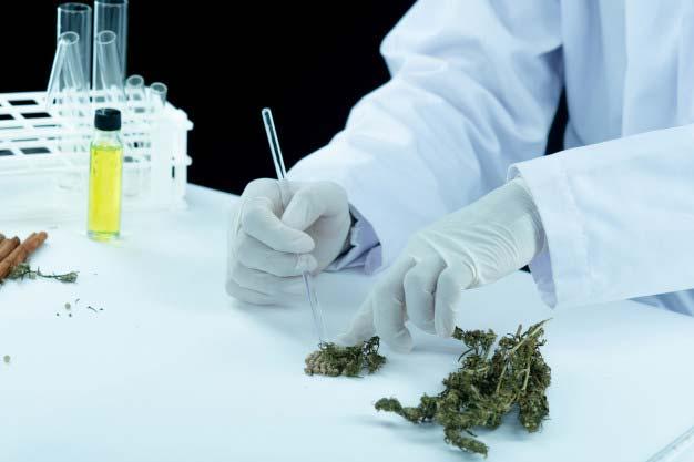 Cannabis-disorder-treatment